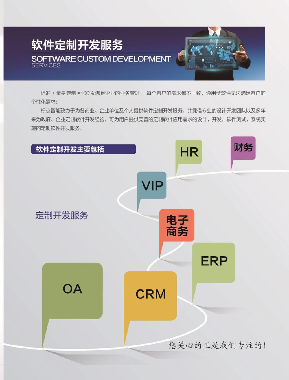 软件开发及服务.jpg